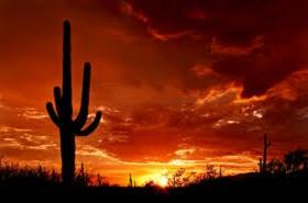 Arizona CLE
